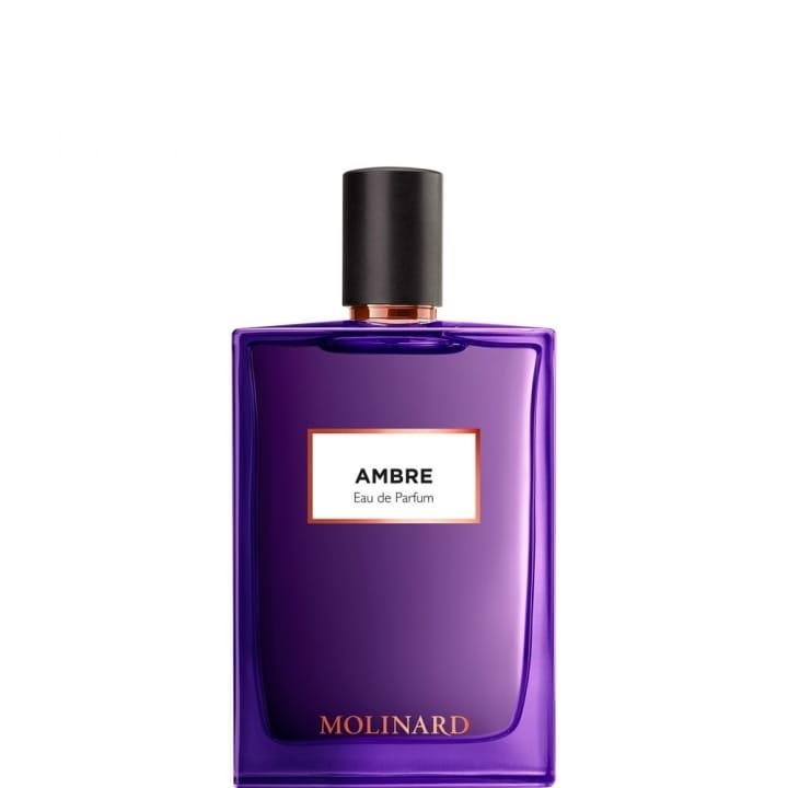 Ambre Molinard Eau de Parfum - Molinard - Incenza
