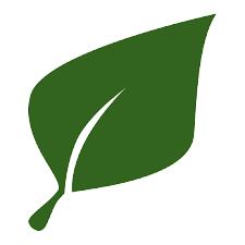 Parfumdo Green